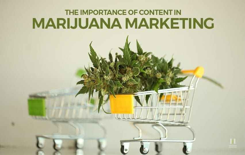 The Importance of Content in Marijuana Marketing