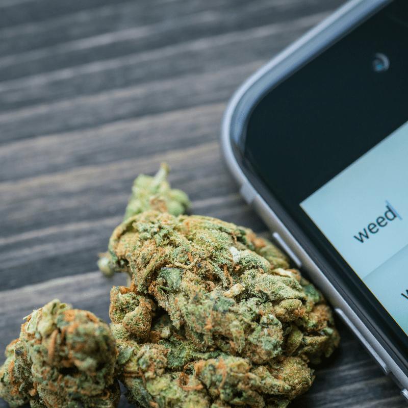 cannabis marketing google
