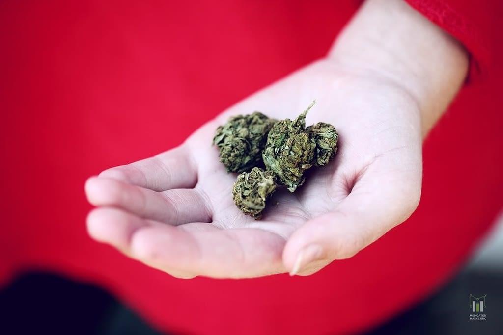 Awareness Towards the Growing Cannabis Community