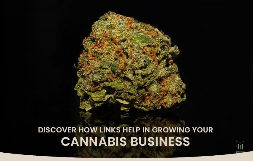 Discover How Links Help in Growing Your Cannabis Business