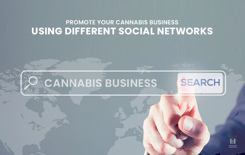Cannabis Business Using Different Social Networks