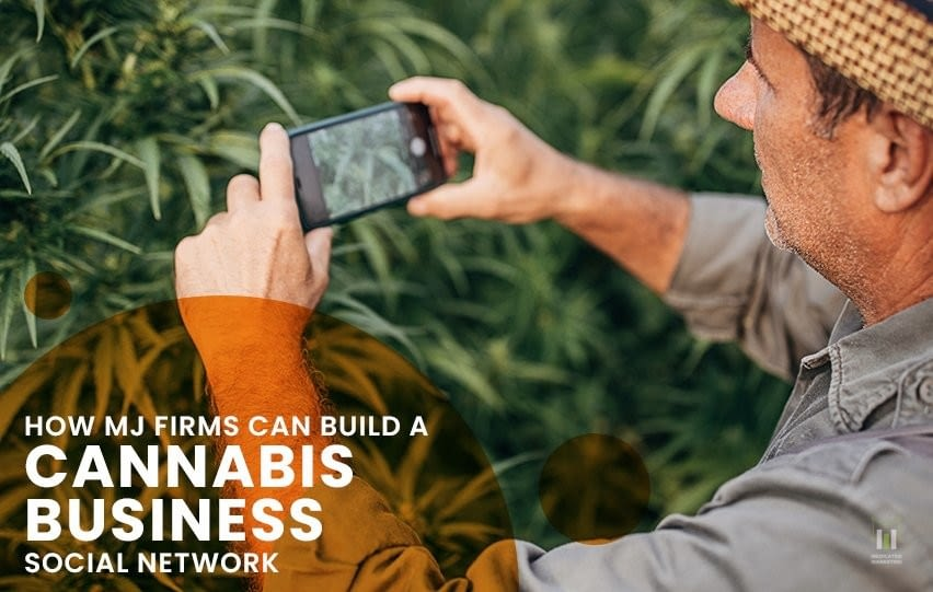 How MJ Firms Can Build a Cannabis Business Social Network