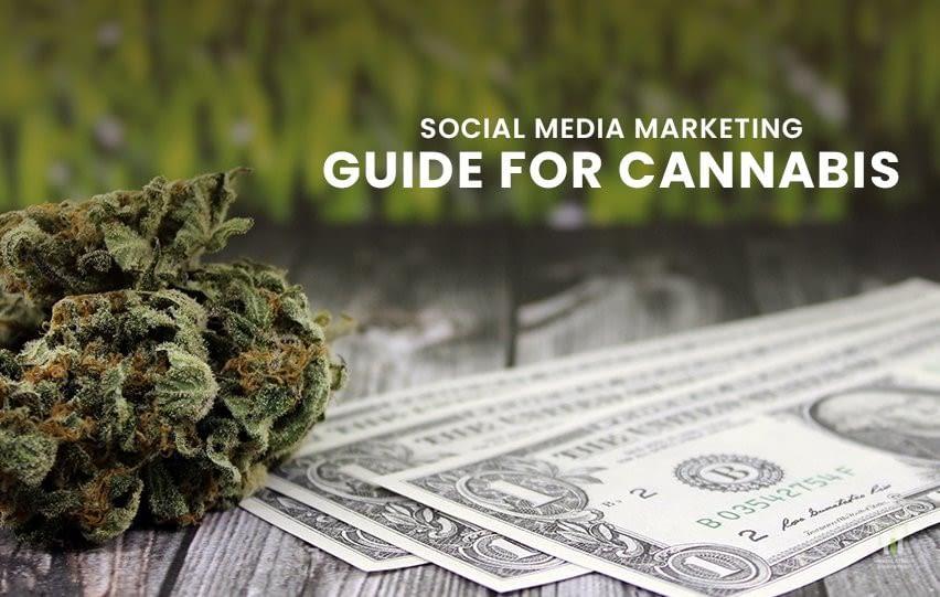 Social Media Marketing Guide for Cannabis