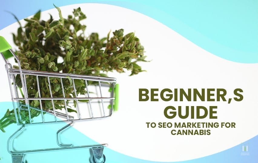 Beginner's Guide to SEO Marketing for Cannabis