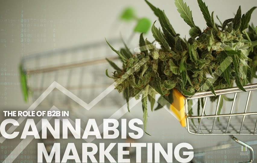 The Role of B2B in Cannabis Marketing