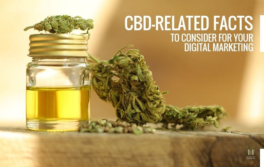 CBD-Related Facts to Consider for Your Digital Marketing