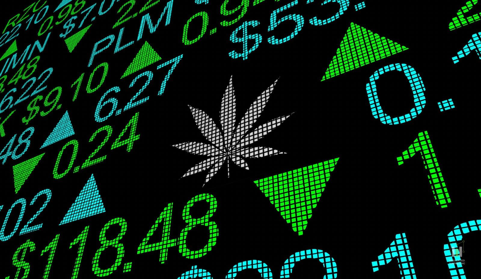 5 Ways To Find Investors For Your Cannabis Company