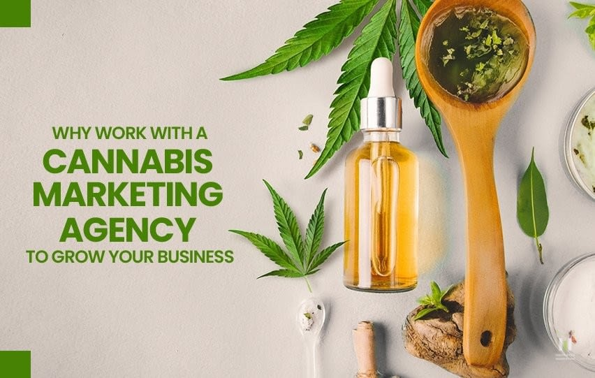 Work with a Cannabis Marketing Agency to Grow Your Business