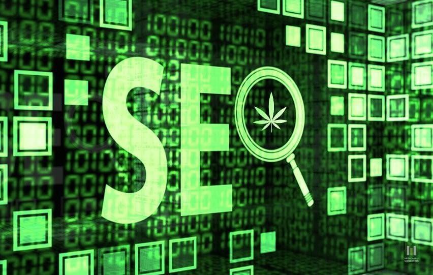Optimize Your Cannabis Site Through SEO