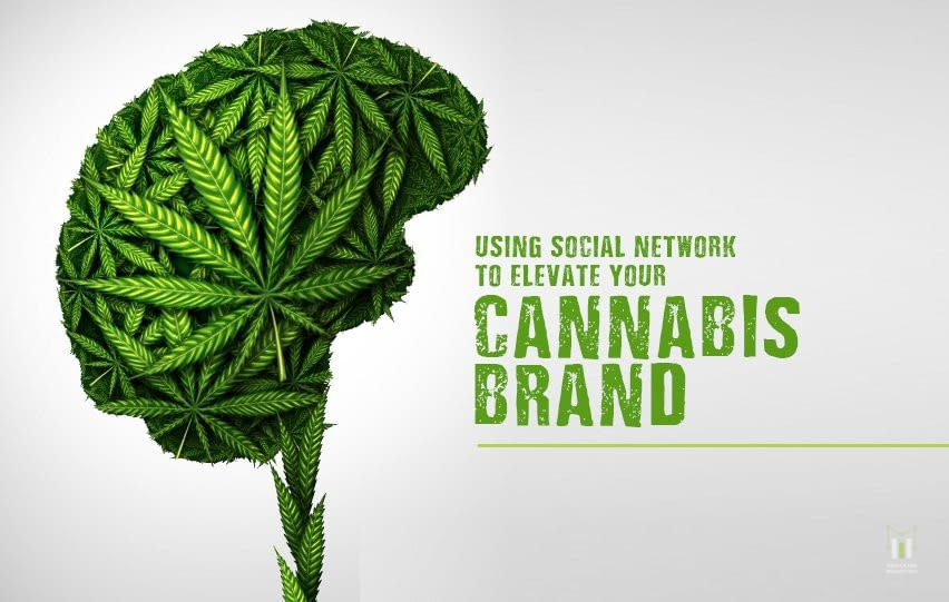g Social Network to Elevate Your Cannabis Brand