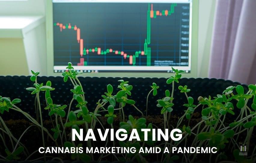 Navigating Cannabis Marketing Amid a Pandemic