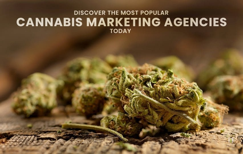 Discover the Most Popular Cannabis Marketing Agencies Today